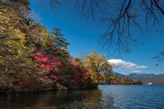 A cruise boat takes tourist to see autumn color in Chuzenji lake with turquoise surface of water and colorful of tree with yellow. Green and red and blue sky royalty free stock images