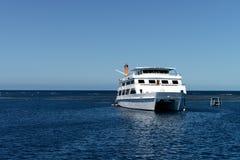 Cruise in Groot Barrièrerif, Steenhopen Stock Foto