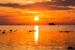Cruise liner ship in sunset in sea Stock Images