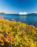 Cruise ship along Acadia National Park Stock Photos
