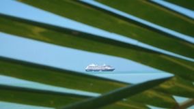 Cruise Ship Anchored in Tropical Bay. View Through Palm Tree Leaves. Shot with a Sony a6300 fps29,97 FHD stock video