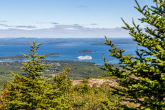 Cruise Ship in Bay Beyond Fir Trees Stock Image