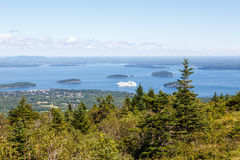 Cruise Ship Beyond Evergreens Stock Photos