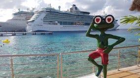 Cruise ship in cozumel. Senior frog in mexico stock image