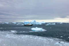 Cruise ship crusing around ice floes in Antarctic waters Royalty Free Stock Image