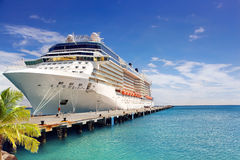 Cruise Ship. Luxury Cruise Ship in Port Royalty Free Stock Photography