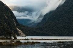 Cruise ship in Milford Sound Royalty Free Stock Photos