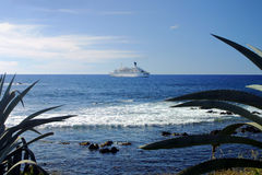 Cruise ship at Sea. Cruise liner ship at sea with tropical plants in foreground Stock Images