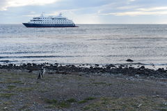 Cruise ship Via Australis at the Chilean island of Magdalena. Stock Image