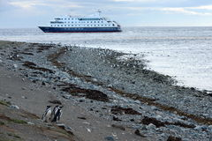 Cruise ship Via Australis at the Chilean island of Magdalena. Royalty Free Stock Images