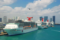 Cruise ships at port of Miami. Carnival cruise lines ships docked at Miami port Stock Image