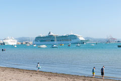 Cruise ships in Port of Tauranga New Zealand. Stock Images