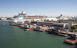 Cruise terminal in Miami Royalty Free Stock Images