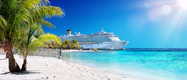 Cruise To Caribbean With Palm tree. On Coral Beach Royalty Free Stock Images
