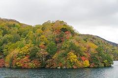Cruisereis langs Chuzenji-Meer in de herfst, Nikko, Japan stock afbeelding