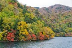 Cruisereis langs Chuzenji-Meer in de herfst, Nikko, Japan royalty-vrije stock foto's