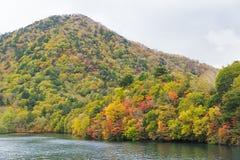Cruisereis langs Chuzenji-Meer in de herfst, Nikko, Japan royalty-vrije stock afbeeldingen