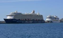 Cruiseschepen in Funchal, Madera, Portugal Stock Afbeelding