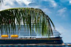 Cruiseschip achter palmblad in een Caraïbische thuishaven royalty-vrije stock foto's