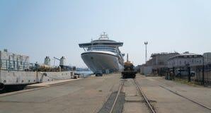 Cruiseschip Diamond Princess Royalty-vrije Stock Afbeelding