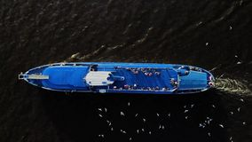 Cruiseschip die over rivier varen - luchtlengte Heel wat zeemeeuwen dichtbij de voering stock video