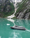 Cruiseschip in Tracy Arm Royalty-vrije Stock Fotografie