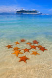 A cruiseship and a starfish. Turquise waters of the caribbean, starfish and the biggest cruiseship in the world in the background, beautiful tropical destination Royalty Free Stock Images