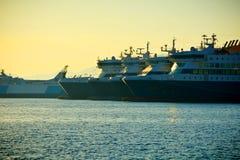 Cruisevoeringen Stock Afbeeldingen