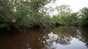 Cruising along a river stock video
