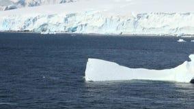 Cruising in Antarctica - Fairytale landscape stock video