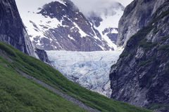 Cruising Endicott Arm. Cruising up the Endicott Arm to Dawes Glacier Royalty Free Stock Photo
