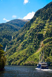Cruising at Fiordland Stock Images
