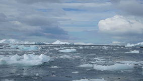 Cruising ice field, Avers Island, Antarctica stock footage