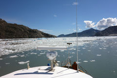 Cruising through ice floes in beautiful prince william sound Royalty Free Stock Image
