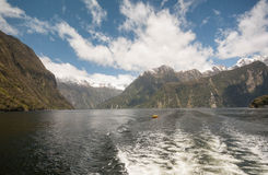Cruising Milford Sound. Stock Image