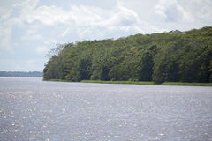 Cruising on the river the Amazon, in the rain forest, Brazil Royalty Free Stock Images