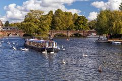 Cruising on the River Avon, Stratford upon Avon, England. Royalty Free Stock Images