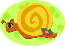 Cruising Snail with a Flower. This cute Snail is checking out the environment Royalty Free Stock Image