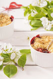 Crumble with strawberry and blackcurrant Royalty Free Stock Photo