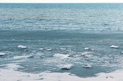 Ice sludge in the sea, crumbled ice floats in the water, the sea does not freeze in winter. Crumbled ice floats in the water, ice sludge in the sea, the sea does Royalty Free Stock Photography