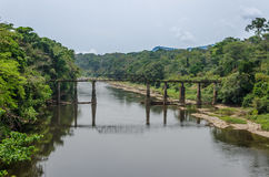 Crumbling iron and concrete walking bridge crossing large river in rain forest of Cameroon, Africa Stock Photo