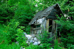 Crumbling shack. Decaying wooden shack in the woods stock photo