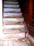 Crumbling stairway of abandoned home in ghost town of Ironton, Colorado. Royalty Free Stock Photo