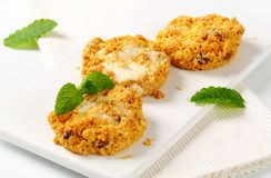 Crumbly cornmeal and almond cookies Royalty Free Stock Image