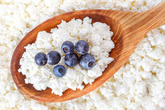 Crumbly cottage cheese in the wooden spoon with blueberries Royalty Free Stock Images