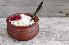 Crumbly homemade cottage cheese Stock Photography