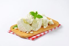 Crumbly white cheese Stock Image