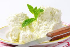 Crumbly white cheese Stock Images