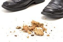 Crumbs van het koekje Stock Afbeeldingen