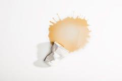Crumpled使用了纸杯用在白色隔绝的溢出的咖啡 库存照片
